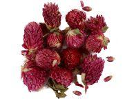 Gedroogde bloemen paars 15 gram